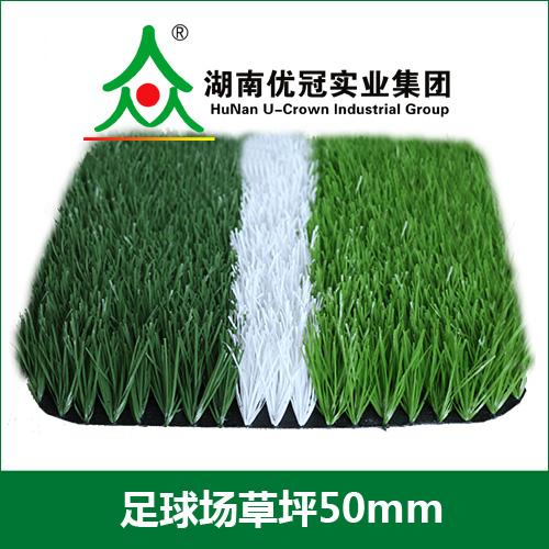 足球场人造草坪.jpg